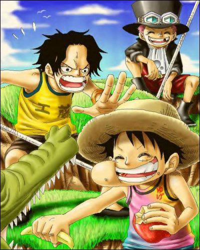 Avec quelle boisson Ace Sabo et Luffy sont-ils devenus frères ?
