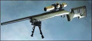 Quel est le nom de cette arme de Call of duty modern warfare ?