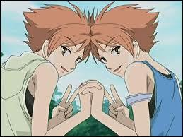 Quelle est jeu preferé de Kaoru et Hikaru Hitachiin ?
