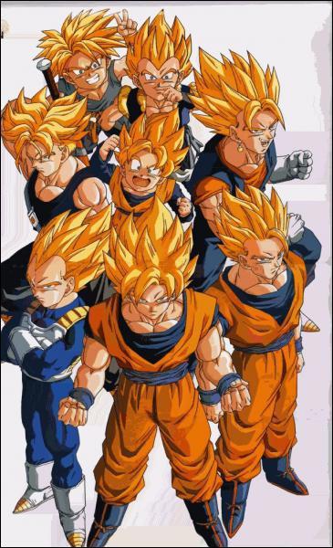 Lequel de ces personnages ne se transforme pas en Super Saiyan ?