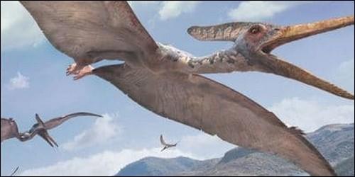 Des reptiles volants d'une envergure de 15m ont existé.