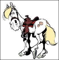 Et pour finir, un cheval nommé :