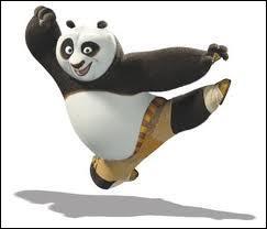 Quel est ce panda, héros du film ' Kung Fu Panda ' ?