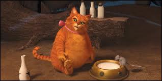 Quel est ce chat, ami de Shrek ( dans Shrek 4 ) ?