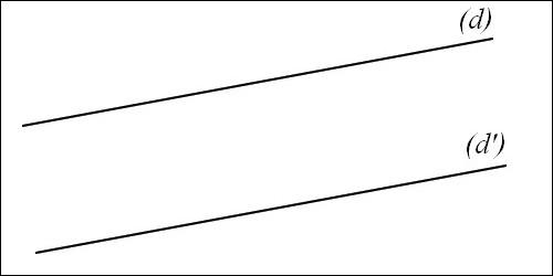 Comment appelle-t-on des droites qui ne se rencontrent jamais ?