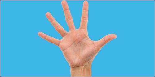 Quel est le nom du petit doigt de la main ?