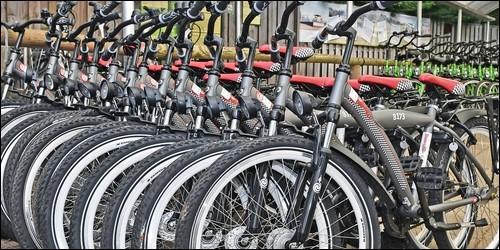 Dans quel pays la bicyclette est-elle le moyen de transport le plus utilisé ?