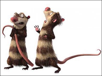 Comment s'appellent les deux opossums ?