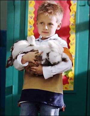Comment s'appelle le lapin de Jamie ?