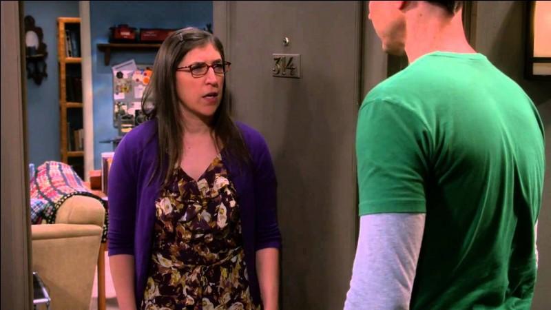 Comment Sheldon rencontre-t-il Amy ?