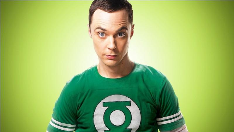 Quel est le métier de Sheldon ?