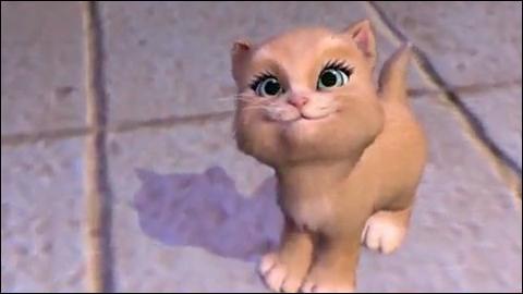 Quizz les chats dans les dessins anim s quiz dessins animes - Barbie et les 3 mousquetaires ...