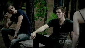 Où Stefan et lui vont-ils chasser ?