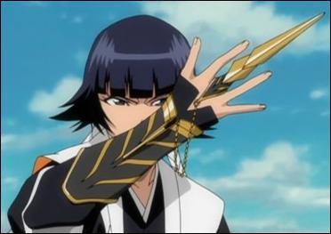 Quel pouvoir a le shikai de Soi Fon ?