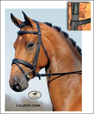 Que met-on sur la tête du cheval pour monter ?