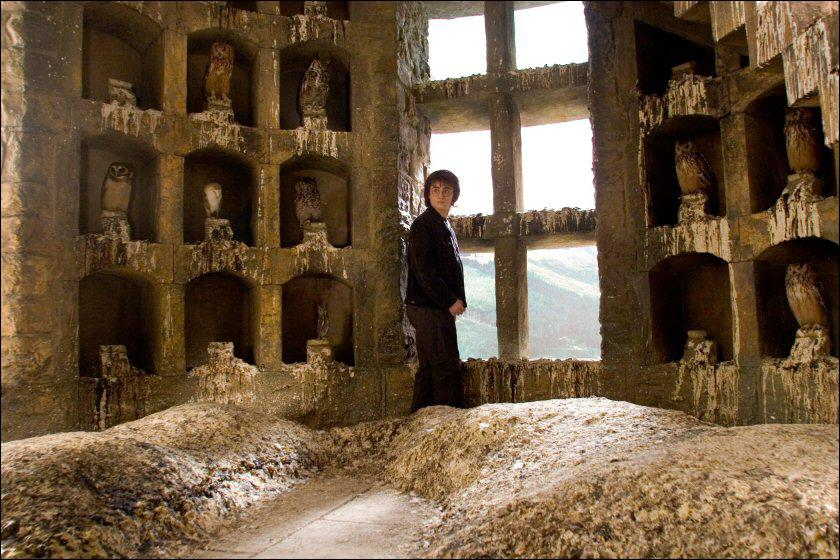 Que répond Cho à Harry (dans la volière) quand il lui dit que Ron est le nouveau gardien de Gryffondor ?