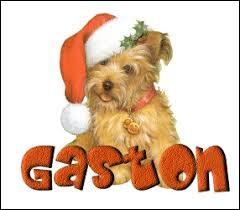 ''Gaston''