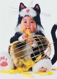 Les bébés z'animaux