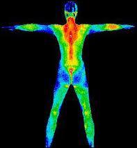 Quelle est la température du corps ?