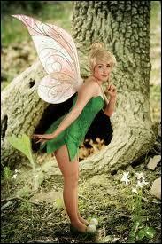 Qui est cette jolie fée aux ailes de papillon ?
