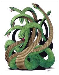 Dans la mythologie japonaise, Yamata no Orochi désigne :