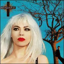Qui est la chanteuse du groupe français 'Niagara' formé en 1984 ?