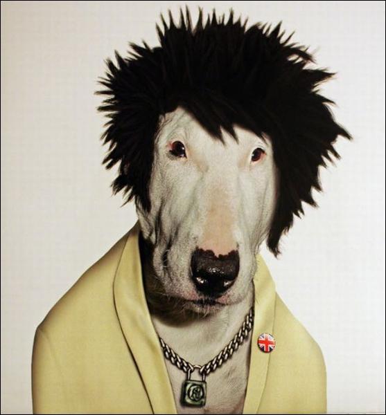 Il était membre du groupe punk ' Sex Pistols ' :
