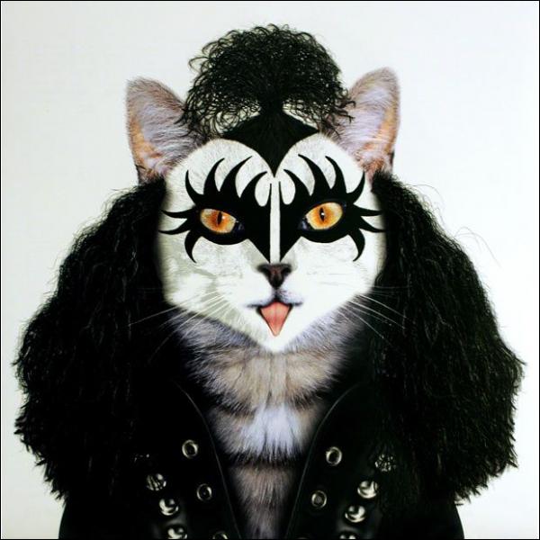 Gene Simmons dans le groupe de hard rock :