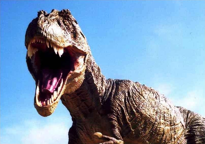 Les Dinosaures : le Tyrannosaurus ( T-Rex )