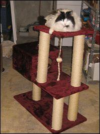 Et n'oublions pas ce meuble contemporain qui envahit nos maisons :