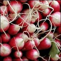 De quel pays est originaire le radis ?