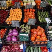 Que désigne le Brassica napus ?