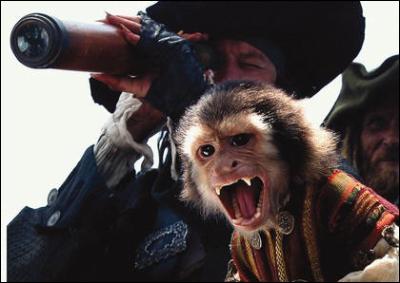 Dans quel(s) film(s) apparaît Jack le singe ? .