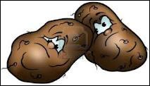 En quoi peuvent se promener les pommes de terre quand elles sortent de l'eau ?