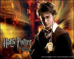 Pourquoi Harry Potter est-il célèbre ?