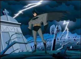 Son véritable nom est Bruce Wayne :