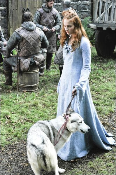La promise du roi Joffrey Baratheon est une Stark, mais laquelle ?