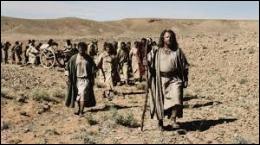 Pendant toute la durée de l'Exode, combien de temps le peuple hébreu a-t-il erré dans le désert à la recherche de la  Terre promise  ?