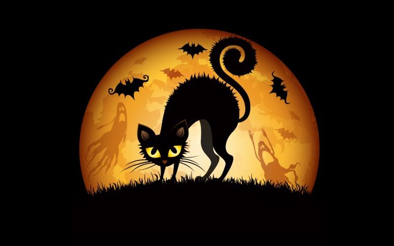 Trrrremblez ! Simples mortels ! ... Vous qui craignez goules, fantômes, esprits maléfiques et leurs cohortes d'animaux malfaisants et répugnants... Ne traînez pas dehors pendant la nuit d'Halloween !