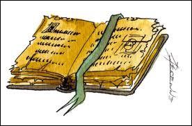 Quel est ce livre de Jean Claude Diedler qui traite du destin d'une guérisseuse au 16° siècle ?