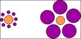 De quelle taille sont les ronds oranges ?