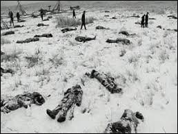 14 ans plus tard en 1890, le régiment de Cavalerie dans lequel s'était illustré Custer commettra un horrible massacre. 300 indiens dont plusieurs dizaines de femmes et d'enfants furent tués en représailles de Little Big Horn. Sous quel nom le massacre est-il connu ?