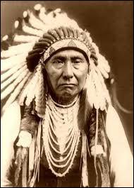 Quel grand chef Sioux Lakota s'est illustré au cours de la bataille de Little Big Horn ?