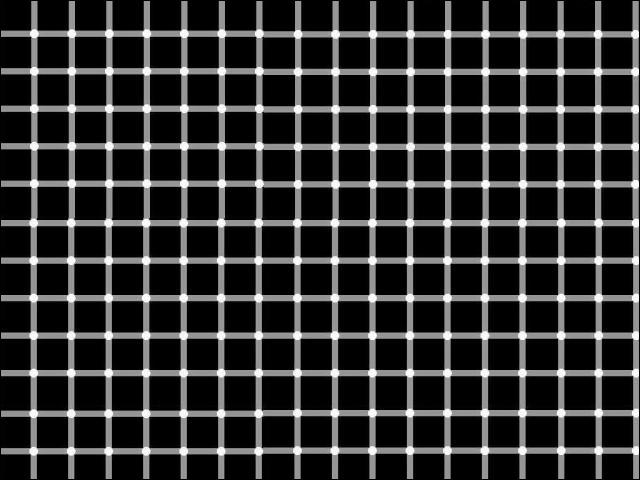 De quelle couleur sont les points entre le lignes ?