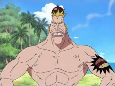 Quel surnom Luffy donne-t-il à ce personnage ? (selon la version que vous avez vu)