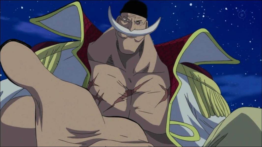 Quel surnom Luffy donne-t-il à ce personnage ?