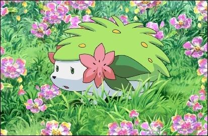 Quelle est l'autre forme de ce Pokémon ?