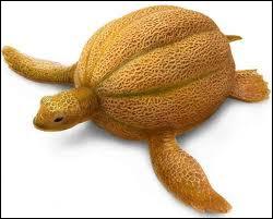 Quel animal et quel fruit voyez-vous sur cette image ?