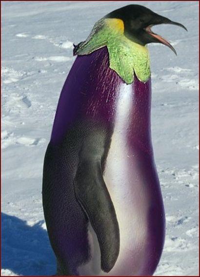 Quel animal et quel légume voyez-vous sur cette image ?