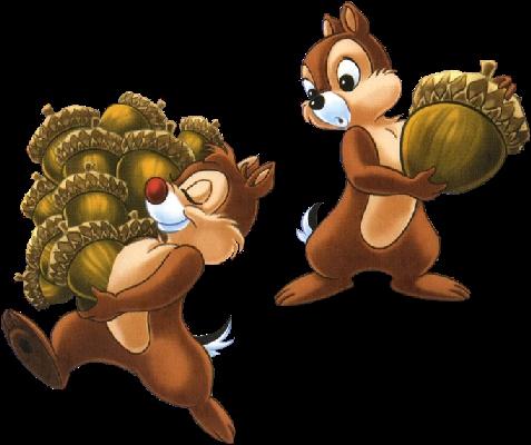 Nous sommes deux écureuils gourmands :